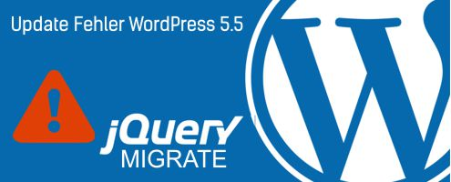 WordPress 5.5 Update Fehler